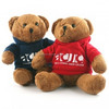 /product-detail/2017-new-arrival-soft-bear-with-clothes-graduate-gifts-school-gifts-50027092101.html