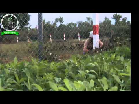 chain link fencing in chennai, barbed wire fencing in chennai and pvc chain link fencing in chennai