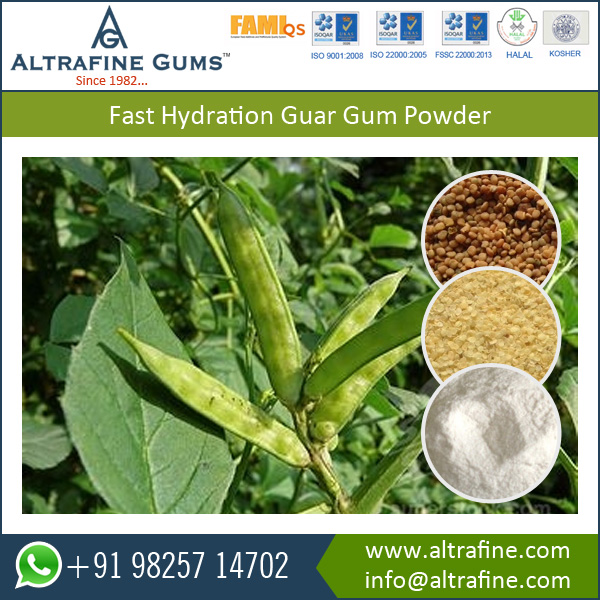 Food Additive Fast Hydrating Guar Gum Powder / Diesel Slurry Guar Gum for Sale
