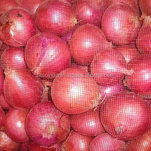 Fresh Nasik Onion For Sale