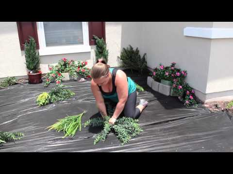 Planting an Artificial Outdoor Fern | How to Plant Artificial Plants and Trees