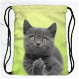 FactorytoShop (UK) Provider of Wholesale and Dropshipper Services Stylish String Simple Backpack - Kitty Paw