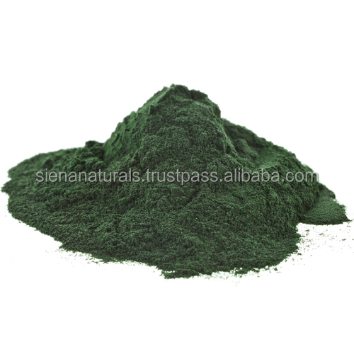 HOT NEW Private Label / OEM / SUPER GREEN POWDER SUPPLEMENT