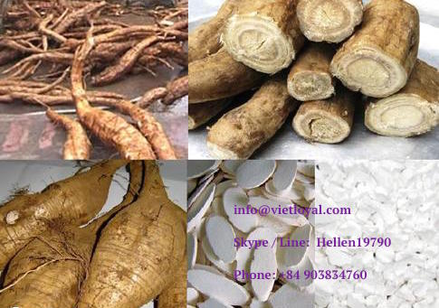 flour beverage Arrowroot powder Kudzu powder Bot San Day Vietnam