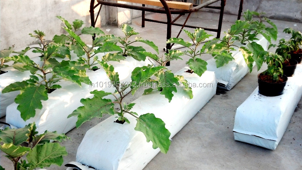 Coco Peat Coir Pith Grow Bags Supplieranufacturers At Alibaba