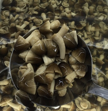 Fresh Quality canned straw mushroom broken