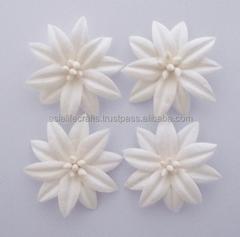 Paper flowers diy 50 pcs white noni paper flowers for color creating paper flowers diy 50 pcs white noni paper flowers for color creating diy crafts handmade cards mightylinksfo