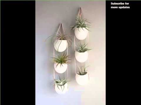 get quotations indoor wall hanging plants indoor house or office plants picture collection cheap office plants