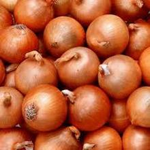 High quality qhite and red Indian origin Onion