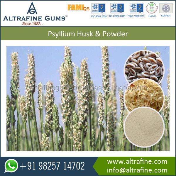 ground psyllium husk powder