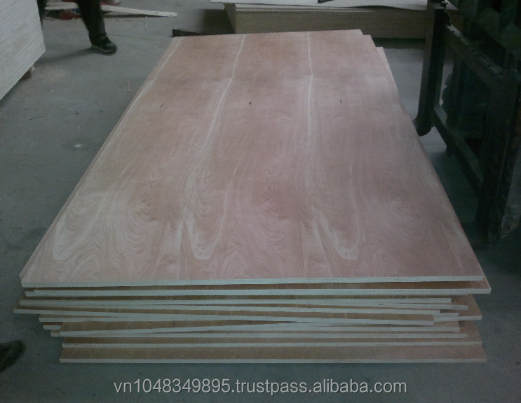 Lowest price plywood size 3x6 for packing export from Vietnam