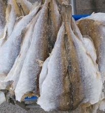 Ec dried salted cod fish buy dried salted cod fish for Where to buy salted cod fish