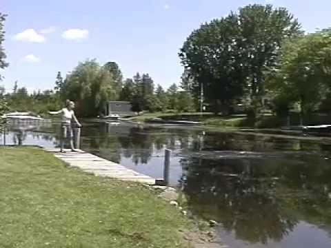Lake Weed Cutter - Easy Water Weeds Control for Pond or Cottage Lake