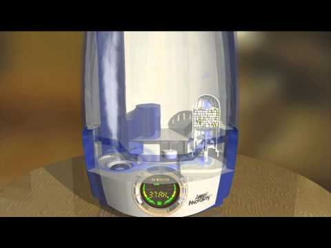 Air Innovations Digital Ultrasonic Humidifier with Digital Display with Rick Domeier