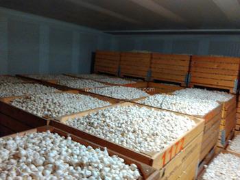 cold storage lofts & Cold Storage Lofts - Buy Cold StorageModern Loft BedCold Room ...
