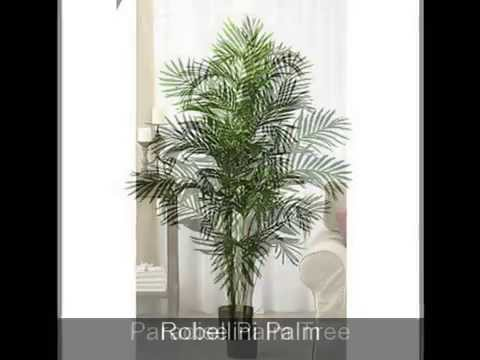Best Silk Palm Trees - www.budtoblooms.com - artificial, faux, fake palm trees