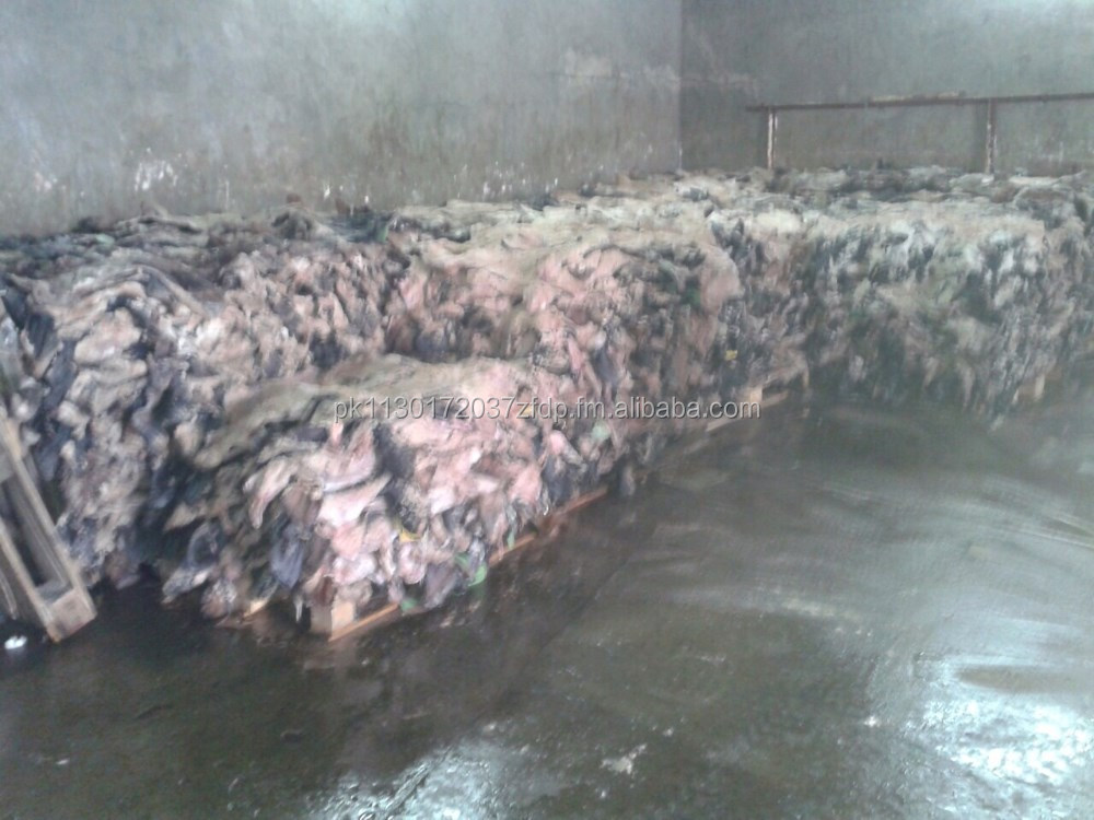 High Quality Cow head hides/Skin with Fats for Africa regions