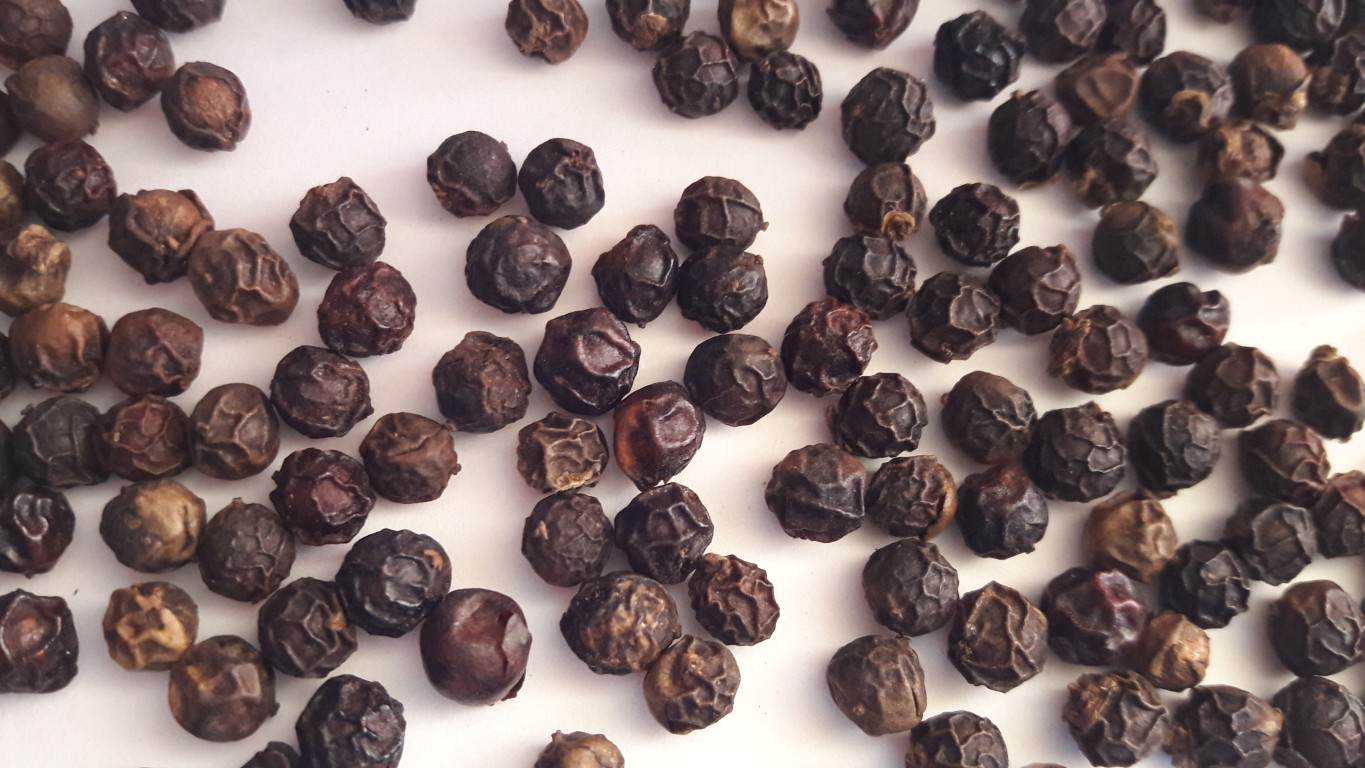 VIETNAM BLACK PEPPER / + 84984418844 Whatsapp