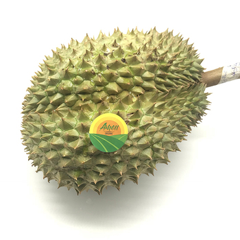 MONTHONG DURIAN PRICE CHEAP FROM VIET NAM