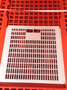 Supplier high quality type CHICKEN CAGE/chicken transportation cage-plastic poultry transport crate/cage