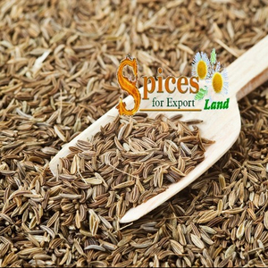 Caraway Seeds, Caraway Seeds Suppliers and Manufacturers at