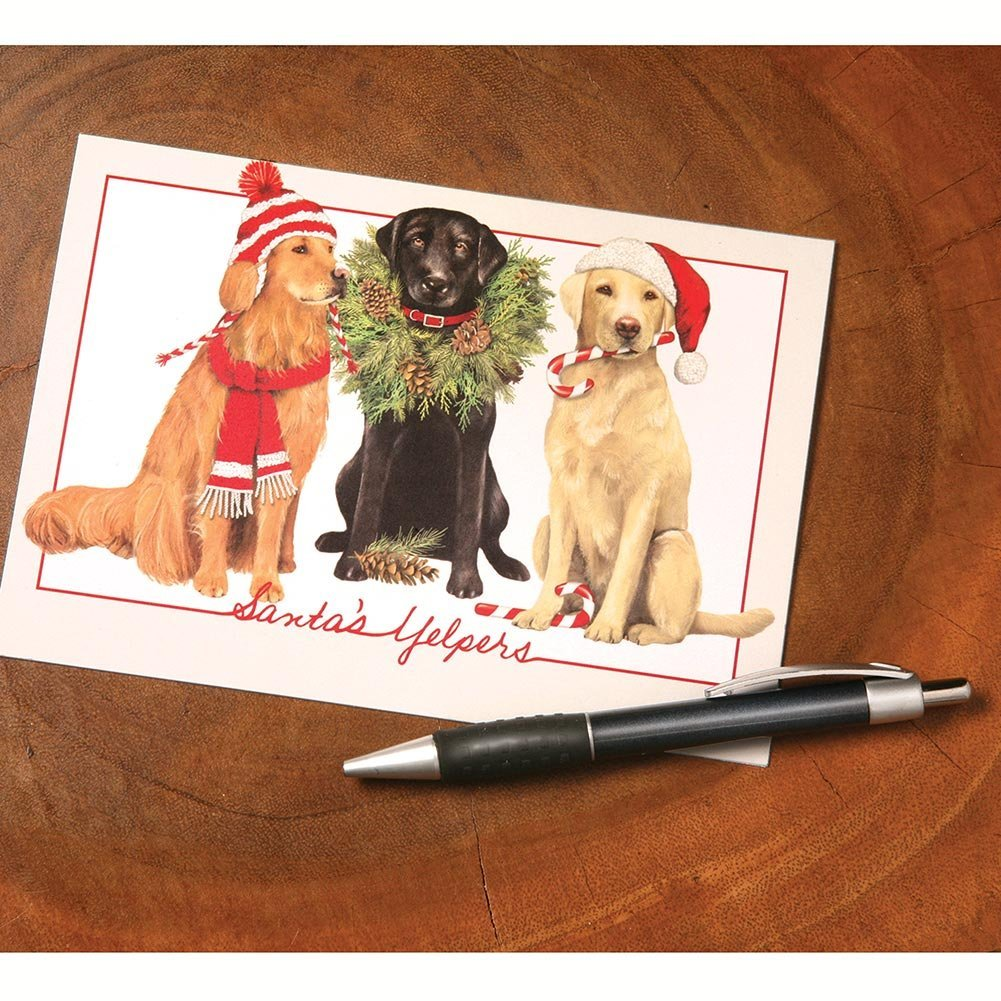 Cheap Dog Holiday Cards Find Dog Holiday Cards Deals On Line At