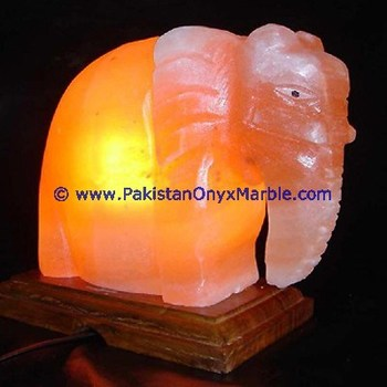 BEAUTIFUL HIMALAYAN USB ANIMALS SALT LAMPS CRAFTED SWAN CAT DOG ELEPHANT HORSE OWL FISH MINI SALT LAMPS, RGB LED LAMPS