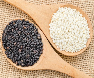 Sesame Seeds Importers Usa, Sesame Seeds Importers Usa Suppliers and