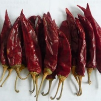 Dried Red Chilli Product of Qingdao
