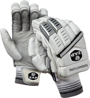 Professional Batting Gloves, Batting, Leg Guard & Wicket Kipping Gloves Best Quality Custom Made Cricket Batting Gloves