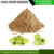 Indian Natural 100% Organic Herbal Real Triple Refined Shifted Amla Powder Manufacturer