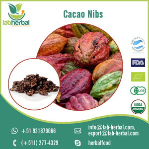 Widely Selling Organic Cacao Nibs/ Cocoa Beans