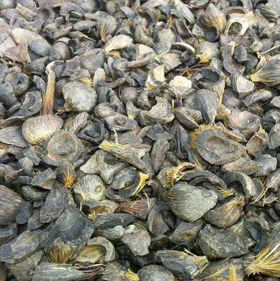 good quality palm kernel shell(PKS) for sale at cheap prices