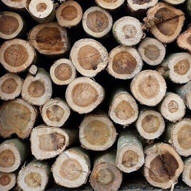 100% TOP QUALITY FIREWOOD FOR SALES