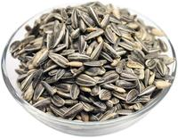 Best Quality Raw Sunflower Seeds for Bulk Export