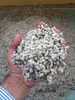 High quality cotton seeds/ Fresh and Dried Cotton Seeds Cottonseed