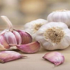 /product-detail/wholesale-garlic-fresh-garlic-garlic-in-viet-nam-whatsapp-84-911-585-628--50044851298.html
