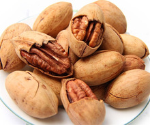 PECAN NUTS IN SHELL FOR BEST PRICE