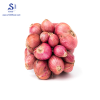 Vietnam red onion for export, / fresh / dry / high quality
