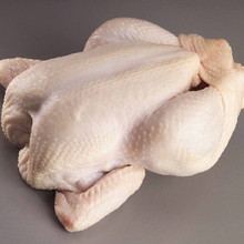 Export Halal Frozen Whole Chicken Brazil /Low-Salt Feature and BQF Freezing Process/1 Year Shelf Life