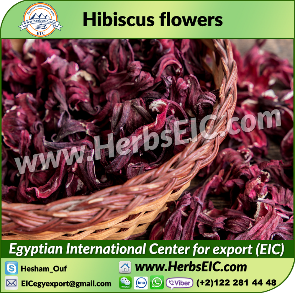Organic hibiscus dried organic hibiscus dried suppliers and organic hibiscus dried organic hibiscus dried suppliers and manufacturers at alibaba izmirmasajfo