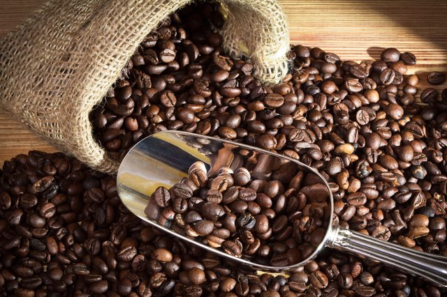 Very Famous Coffee Beans For Sale