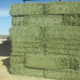 Mixed Hay Bales For Sale, Mix grass for animal feed. Grass Hay