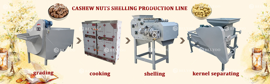 Fully automatic cashew nut shell removing husk manual cashew nut automatic cashew shelling machine price