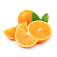 Natural Quality Orange Essential Oil at Competitive Price