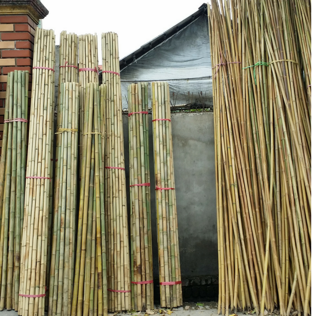 Vietnam bamboo pole for construction