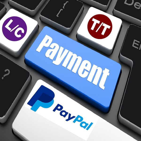 x-payment