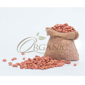 Wholesale Peanuts from Sudan