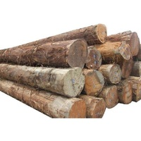 Pine & Hard Wood Logs and Timber