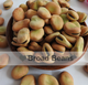 Broad Beans South Africa Origin English Bean, faba Bean